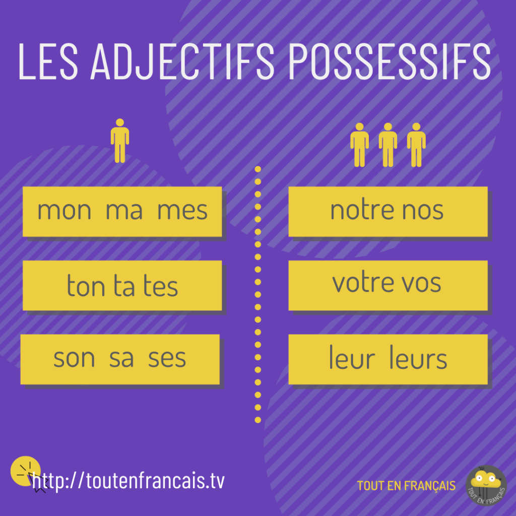 adjectifs possessifs en français